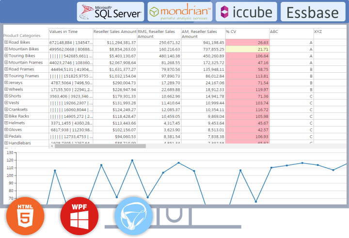 Ranet OLAP-screenshot-0