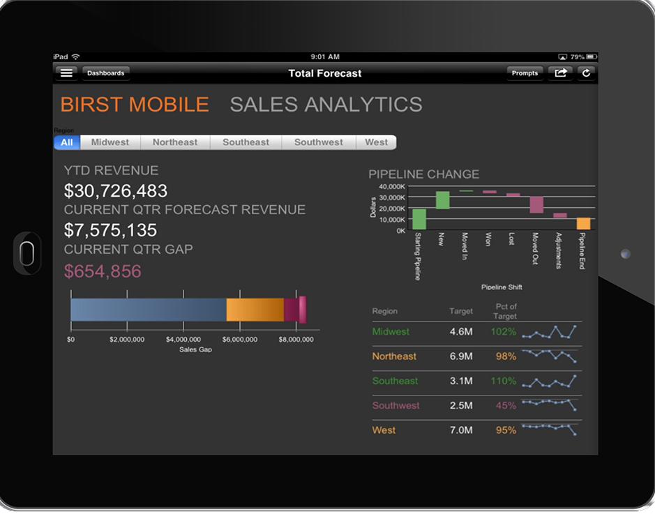 Birst: Exploration de données, Croisement de sources de données, Tableau de bord interactif