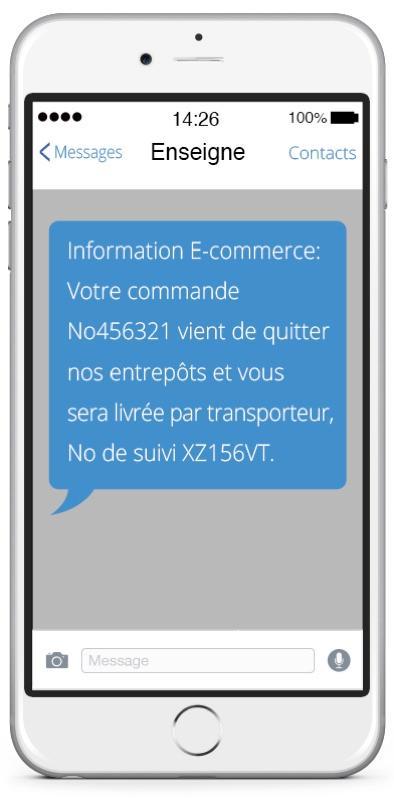 iSend Pro : alerte SMS