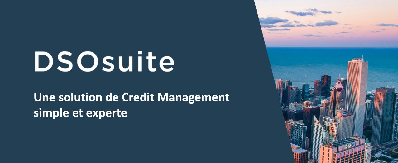 Avis DSOsuite : Credit management pour réduire les impayés et risques client - appvizer