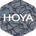 Monstock-HOYA dark