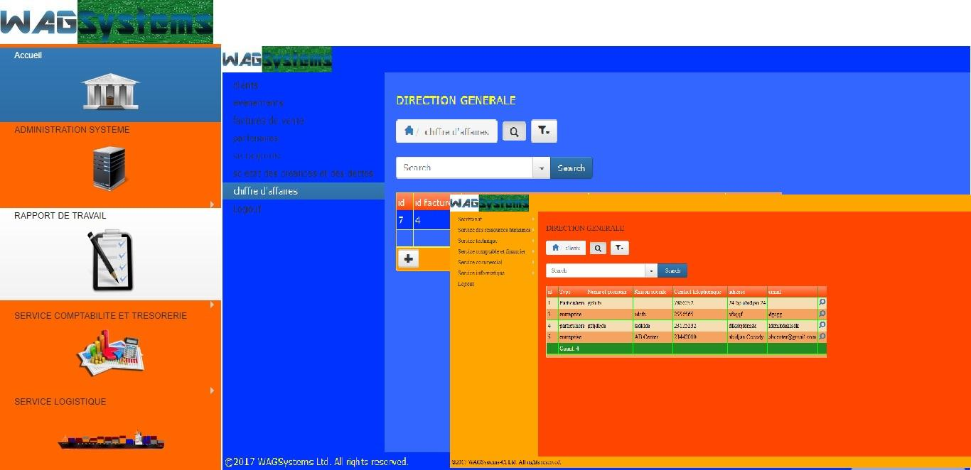 WAGSystems ERP 1.jpg
