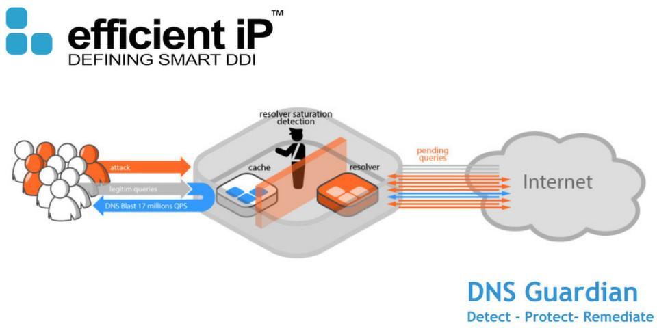 Avis DNS Guardian : Une sécurité DNS pour protéger les services et données - appvizer