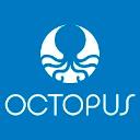 Octopus24