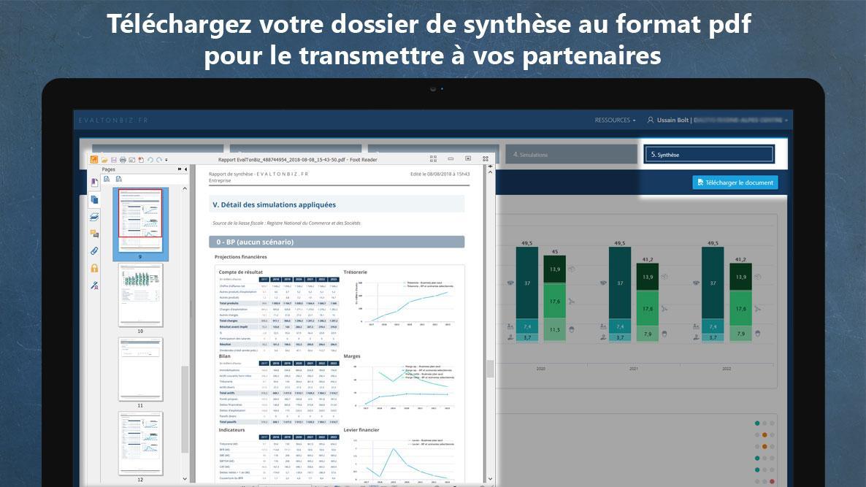 Dossier de synthèse PDF