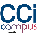 Datalumni-logo_ccicampus_quadri