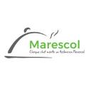 Client Marescol