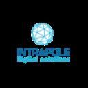 Intrapole digital solutions