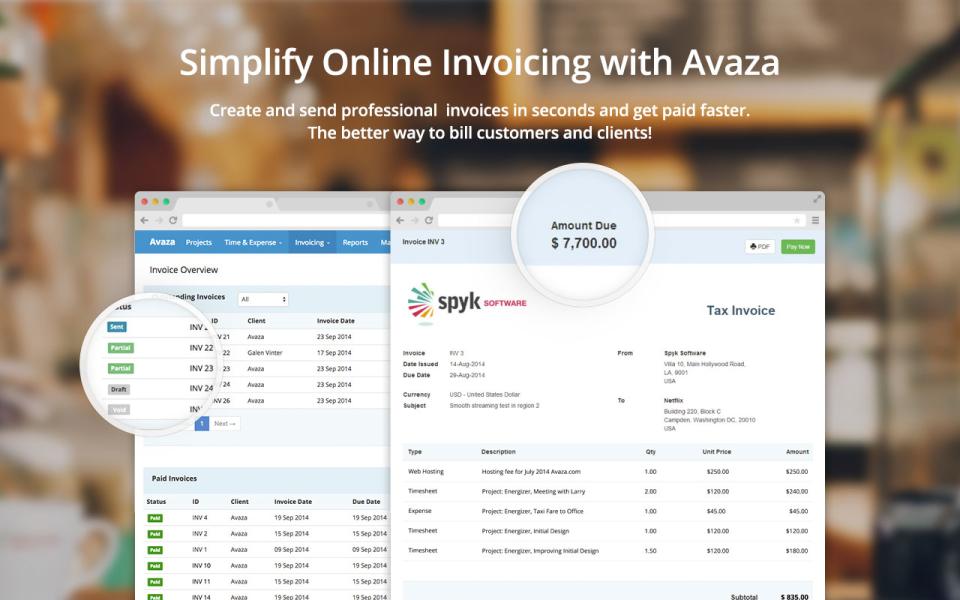 Avaza-screenshot-1