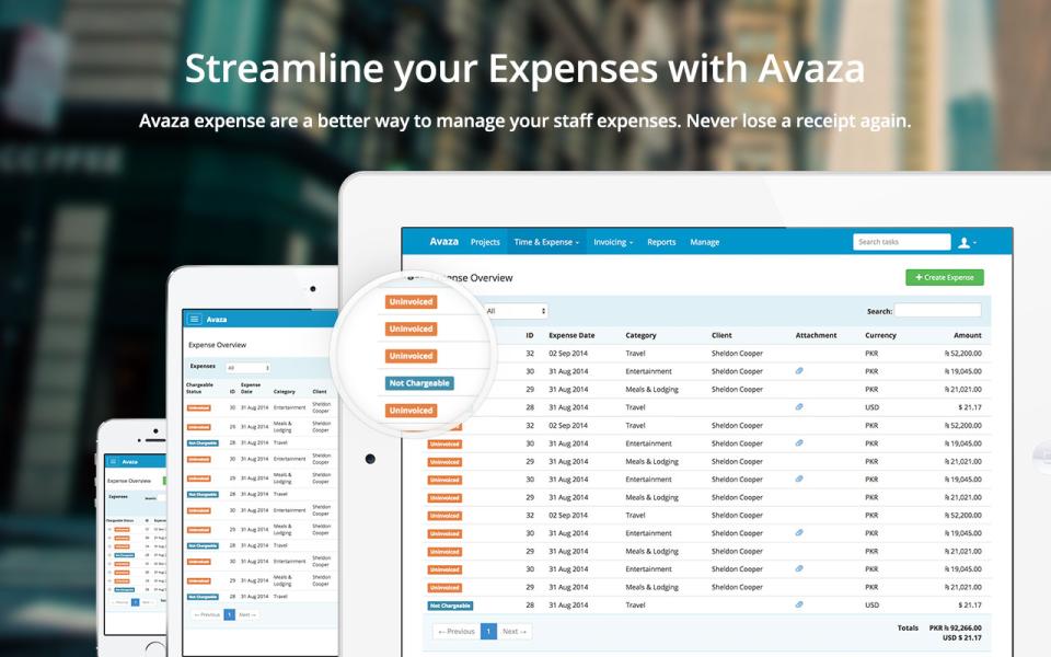 Avaza-screenshot-4