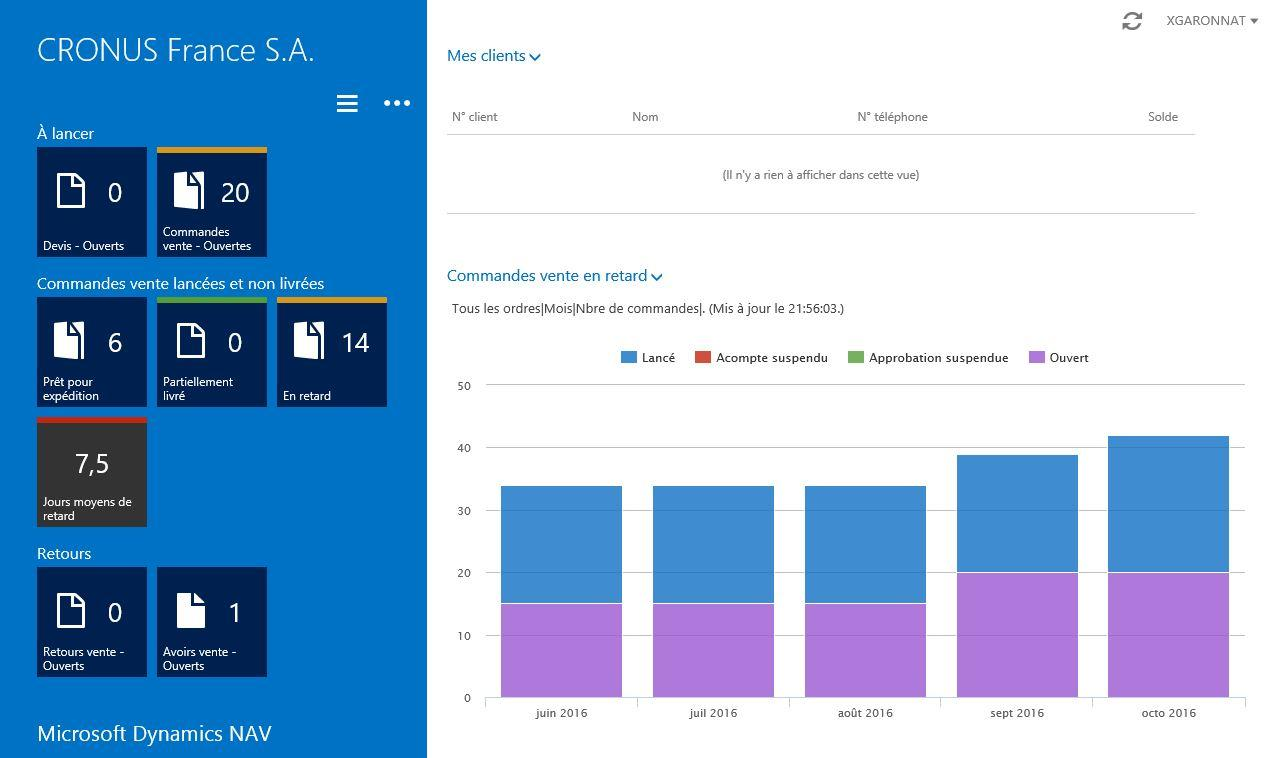 Microsoft Dynamics NAV: Notes, Extranet, Secure Sockets Layer (SSL)