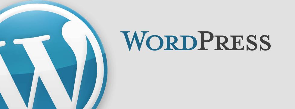Avis WordPress : CMS Open Source leader mondial - appvizer