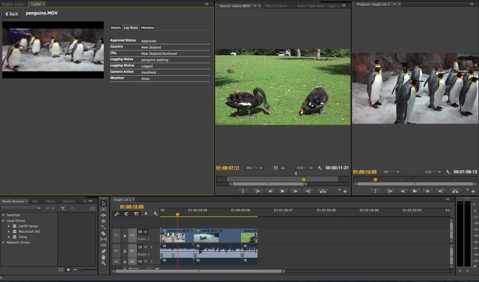 CatDV-screenshot-2