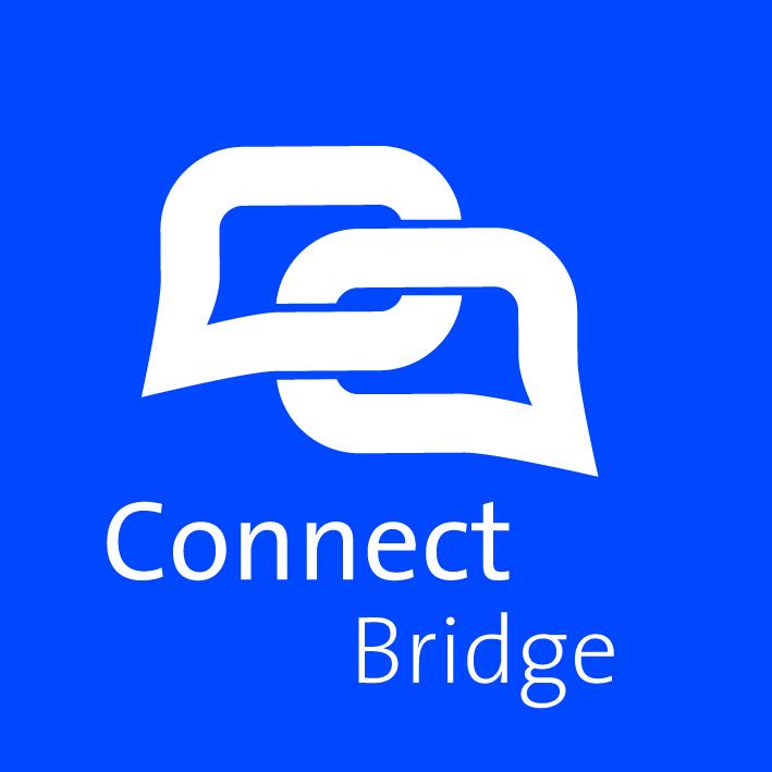 Connect Bridge-screenshot-1