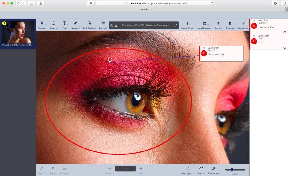 DIALOGUE Engine permet de visualiser les photos en très haute définition et de les annoter.